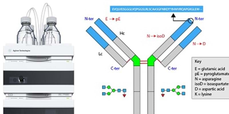 The Benefits of Dedicated HPLC Systems and Chromatography Columns for Analysis of Biomolecules